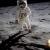 July 15, 2019 - Lunar Landing Golden Anniversary