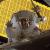 August 14, 2017 - Glass Ceiling Breaks in Space