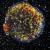 November 6, 2017 - New Star Shatters the Sphere